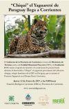 Foto: Chiqui el nuevo yaguareté que se suma al Proyecto Iberá