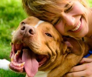 foto: Hoy se celebra el Día del Animal