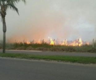 foto: Incendio de pastizales alcanzó a una decena de autos en Mercedes