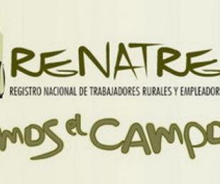 foto: Renatre paga prestaciones por desempleo: inició ayer