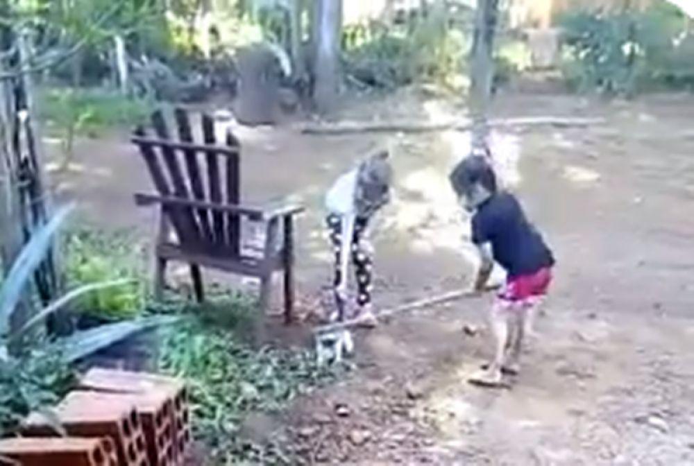 foto: Horror en Misiones: nenas fueron filmadas golpeando a un gato