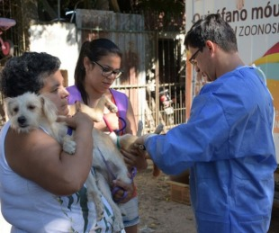 foto: Mascotas Saludables llega al barrio Antártida Argentina