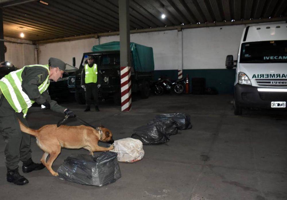 foto: Detienen a siete personas vinculada con una organización narco