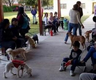 foto: Habrá vacunación antirrábica en barrio Sarmiento