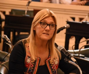 foto: La senadora Nancy Sand presentó su renuncia