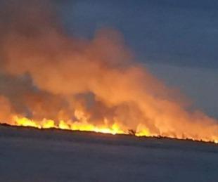 foto: Dejaron prendida una fogata y se incendió un banco de arena