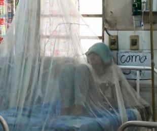 foto: El riesgo de una epidemia de dengue amenaza a la Argentina