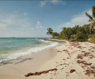 foto: Lanzan un concurso para vivir dos meses en Bahamas con todo pago