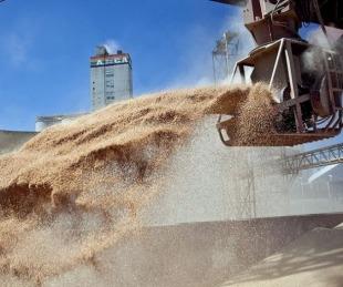 foto: Agricultura suspendió el registro para la exportación de granos