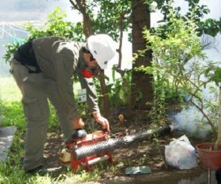 foto: Dengue: Corrientes suma 739 casos positivos de la enfermedad