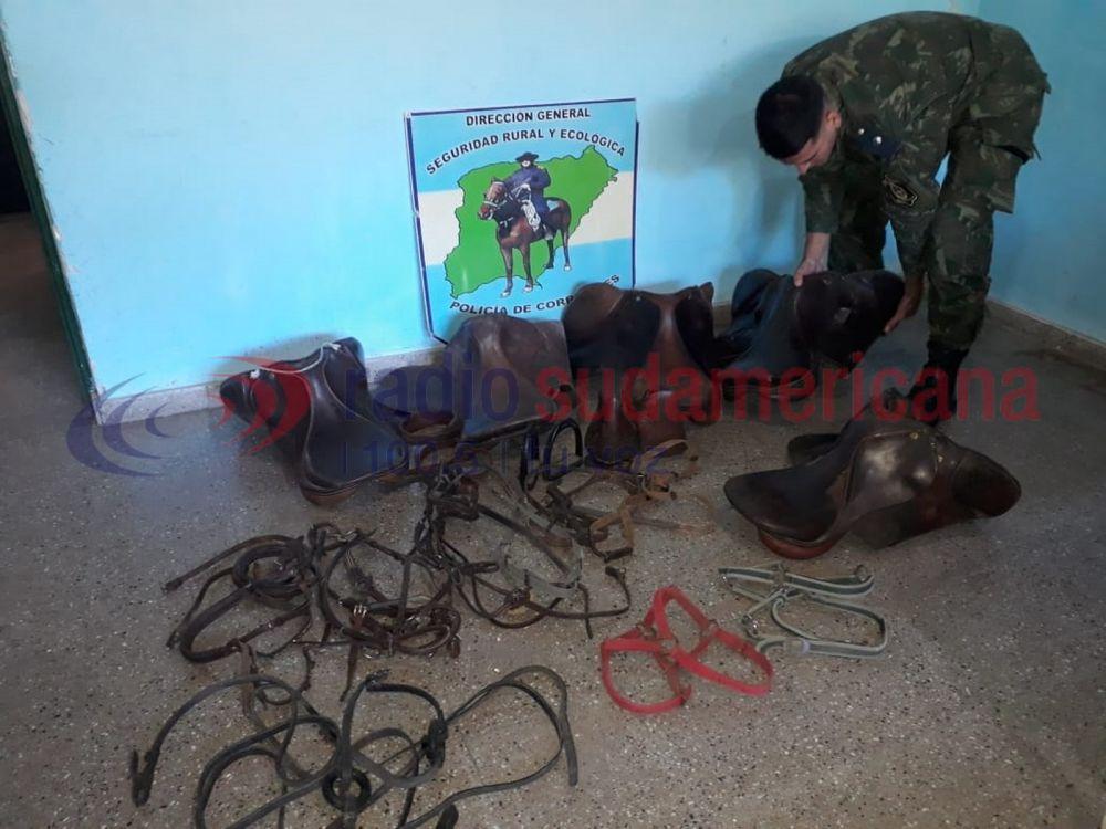 foto: Comprador entregó a la Policía costosas monturas robadas