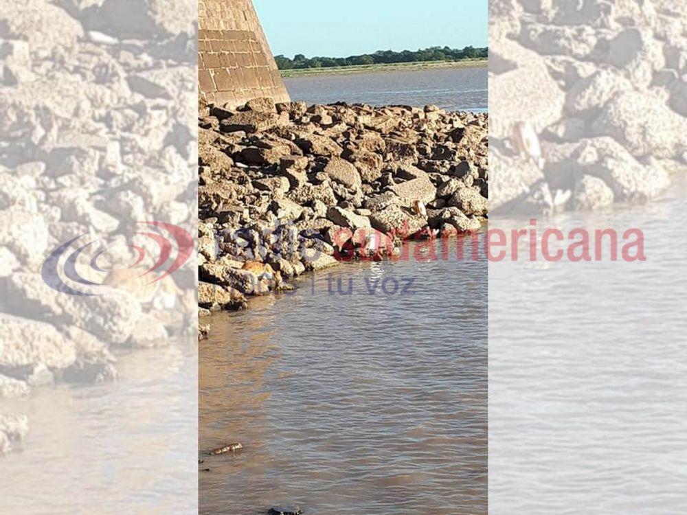 foto: Peces hacen de las suyas en la costa ante ausencia de pescadores
