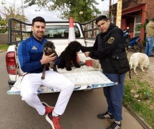 foto: Policías rescataron a dos perros que eran maltratados por sus dueños