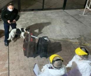 foto: Conmoción por un rosarino que llegó desde Perú y había tenido Covid19