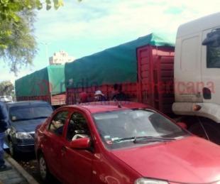 foto: Changarines de Chaco viajaban escondidos en acoplado de un camión