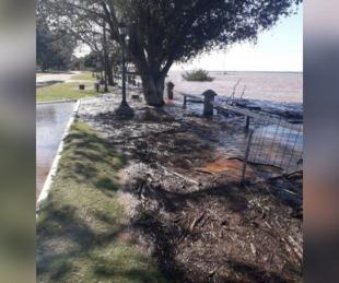 foto: Mientras el Paraná sigue bajo, la costa del Uruguay está en alerta