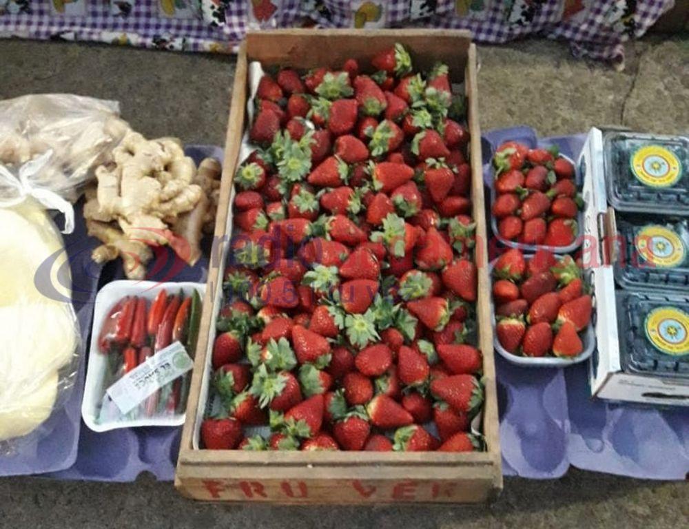 Comprar frutillas es un lujo: se vende a 500 pesos el kilogramo