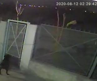 foto: Femicidio en Guernica: así descartó el asesino el cadáver de Sandra