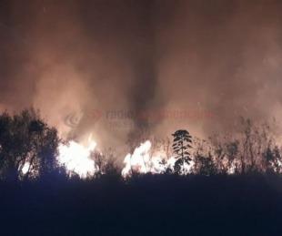 foto: Importante incendio de pastizales tuvo en vilo a todo Santa Ana