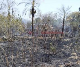 foto: Bomberos controlaron incendio en la zona del INTA por Ruta N°5