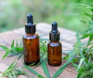 foto: Libres declaró de Interés Sanitario el Aceite de Cannabis como uso medicinal