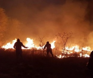 foto: Incendios en Córdoba: dos personas murieron a causa de las llamas