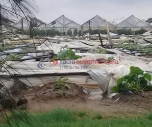 foto: Fotos y videos: fuerte tormenta dejó importantes destrozos en Santa Lucía