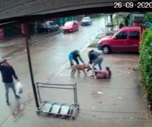 foto: Imágenes sensibles: brutal ataque de un pitbull a una nena de 7 años